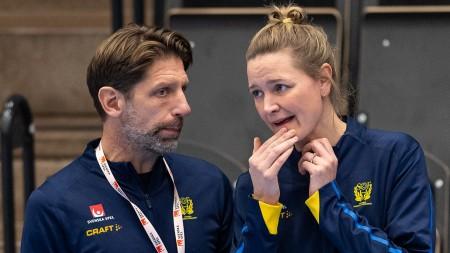 Wiberg missar OS-kvalet i Spanien