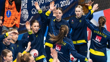 Truppen som ska ta Sverige till VM