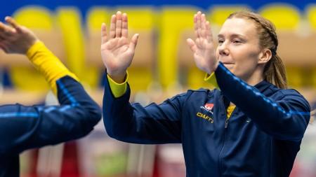 Fakta om truppen som ska ta Sverige till VM