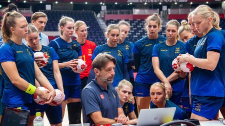 Matchguide: Spanien–Sverige
